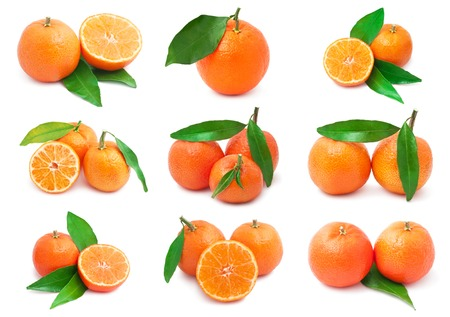 Collection of juicy tangerines or mandarins isolated on white background
