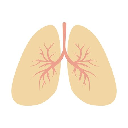 Modern vector illustration of Human Lung isolated on white background.