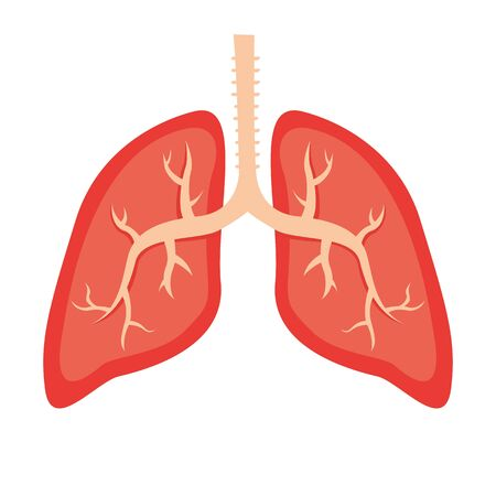 Vector illustration of Lungs icon. Human anatomy concept. Medical and health. Lungs of a healthy patient.