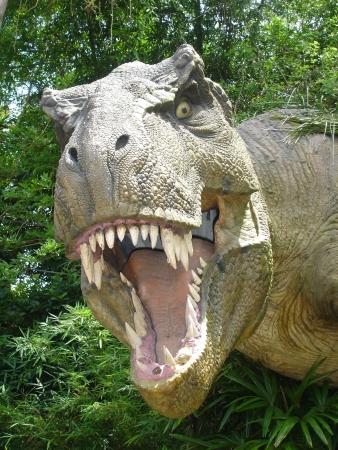 tiranosaurio rex: Dinosaur  Foto de archivo
