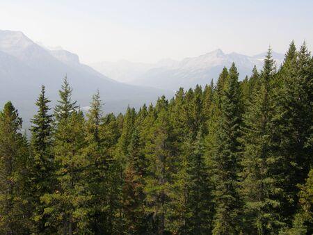 victoria park: Rocky Mountains in Alberta, Canada