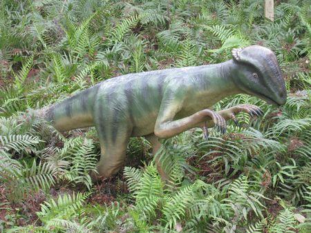 Dinosaur Stock Photo - 6282037