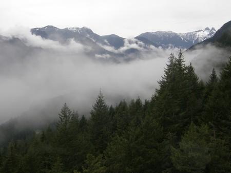 grouse: Grouse Mountain near Vancouver, Canada Stock Photo