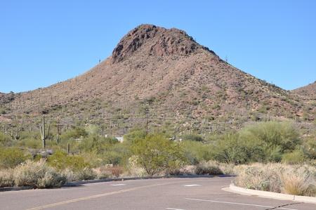Arizona Desert Stock Photo - 8558306