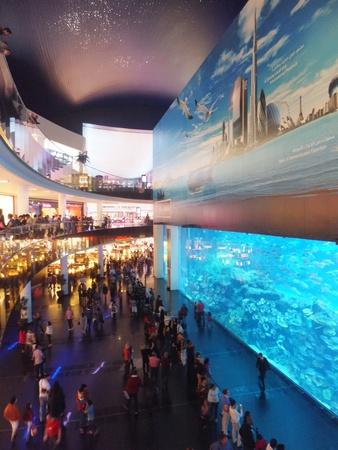 DUBAI, UAE - DECEMBER 25: View of the aquarium at Dubai Mall in Dubai, on Decemebr 25, 2011. It is the largest indoor aquarium in the world at a length of 50 meters.