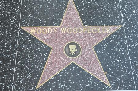p�jaro carpintero: HOLLYWOOD - estrella de 07 de diciembre P�jaro Loco s sobre Hollywood Walk of Fame el 7 de diciembre de 2012 en Hollywood, California Esta estrella se encuentra en Hollywood Boulevard y es uno de 2.400 estrellas de la celebridad