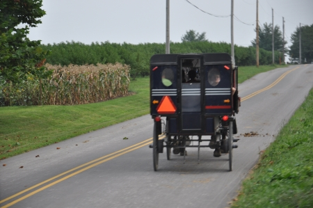 Amish Carriage Stock Photo
