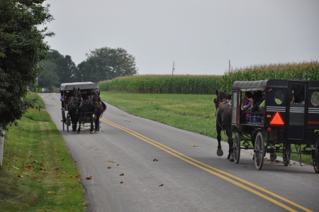 hitching post: Amish Carriage Stock Photo