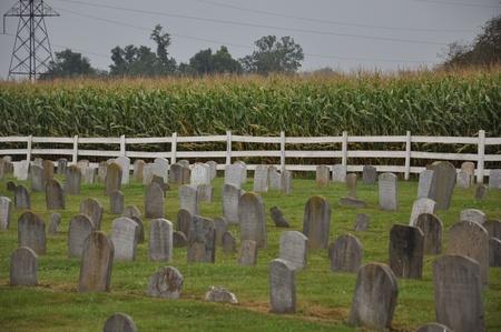 amish: Amish Cemetery in Pennsylvania