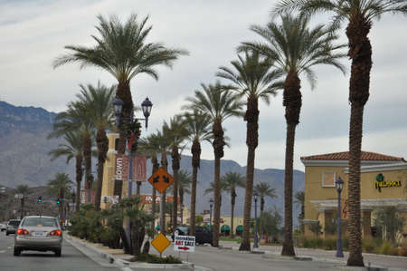 palm lined: Palm Desert in California