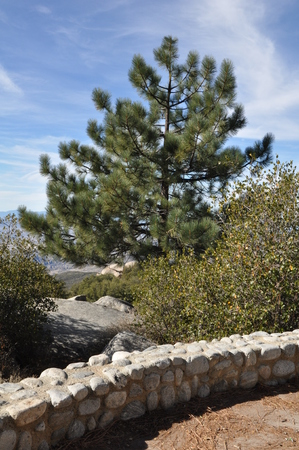 Pines to Palms Scenic Byway in California photo