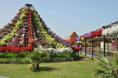 アラブ首長国連邦、ドバイ奇跡の庭は以上 4500 万の花