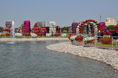 Dubai Miracle Garden, in the UAE, has over 45 million flowers