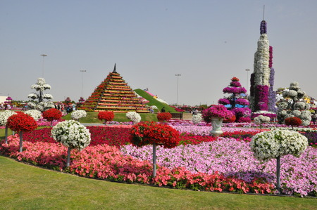 Dubai Miracle Garden in the UAE  It has over 45 million flowers