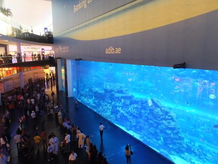 Aquarium at Dubai Mall, in the UAE, is the largest indoor aquarium in the world