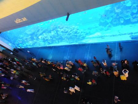 Largest Indoor Aquarium in