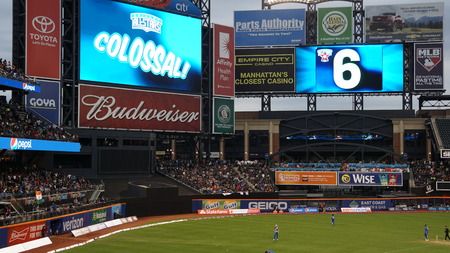 outfield: The 2015 Cricket All-Stars Exhibition Match at Citi Field in New York, on November 7. 2015. Sachins Blasters played Warnes Warriors.