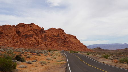 bush fire: Valley of Fire State Park in Nevada