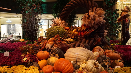 conservatory: Fall Season at Bellagio Conservatory in Las Vegas Editorial