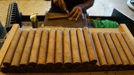 romana: Cigar Factory in La Romana, Dominican Republic