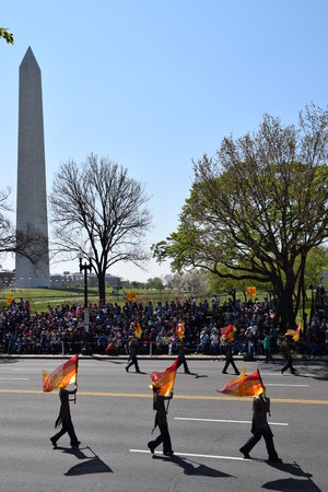 district of columbia: The 2016 National Cherry Blossom Parade in Washington DC