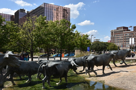 The Cattle Drive Sculpture at Pioneer Plaza in Dallas, Texas Editorial