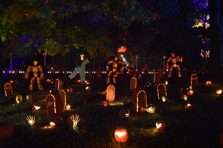 hollows: The 2016 Great Jack OLantern Blaze in Croton-on-Hudson in New York