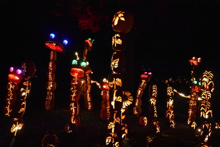 hollows: The 2016 The Great Jack OLantern Blaze in Croton-on-Hudson in New York