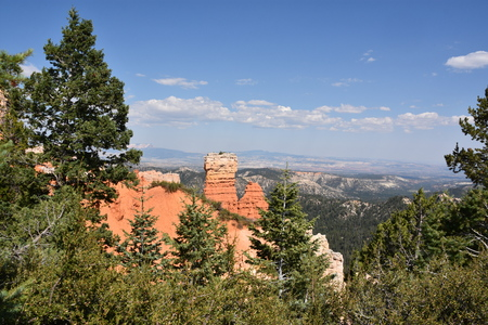 View from Ponderosa Point at Bryce Canyon National Park in Utah
