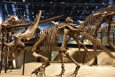 Natural History Museum of Utah in Salt Lake City, Utah