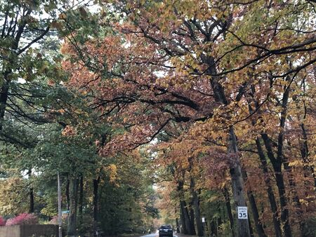 Fall Colors in Connecticut