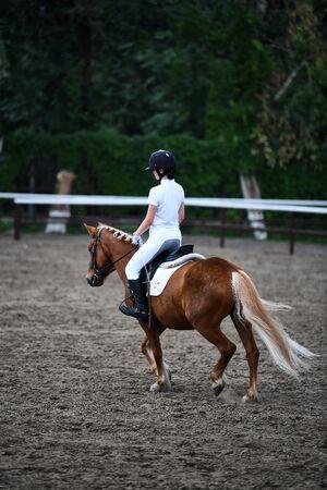 Una joven monta un caballo marrón en un prado de formación Foto de archivo