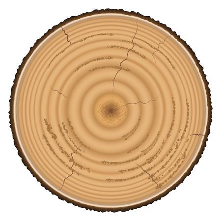 白い背景に分離された木材を製材します。