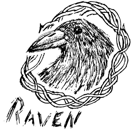 Crow raven handdrawn sketch in blackthorn  isolated on white. Vector