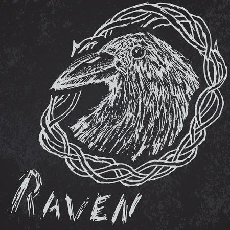 corvus: Crow raven handdrawn sketch in blackthorn on blackboard. Illustration