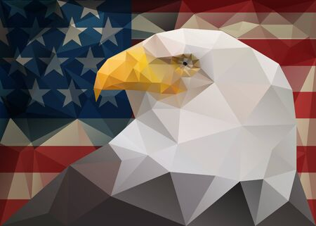 triangular eyes: Abstract polygonal triangle American bald eagle on USA flag background Illustration