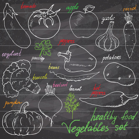 Vegetebles set  Sketchy Notebook Doodles set with Lettering, Hand-Drawn Vector Illustration Design Elements on Lined Sketchbook on chalkboard background