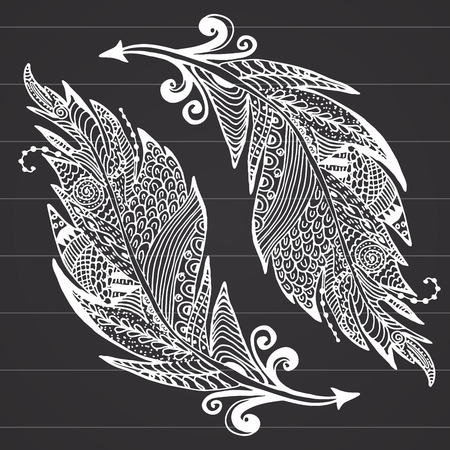 bird feathers: Ornamental hand drawn sketch of feathers Illustration