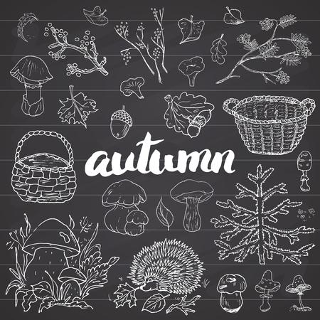 秋のシーズン セット。  イラスト・ベクター素材
