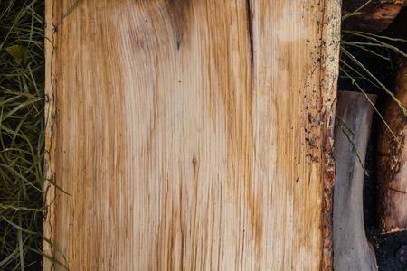 Wood texture background, wooden bark close up. Grunge textured image.