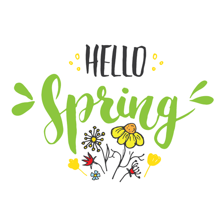 Hello Spring Calligraphy lettering handwritten sign, Hand drawn grunge calligraphic text. Vector illustration . Archivio Fotografico - 124068357