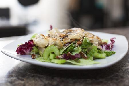Healty salad with chicken breast Reklamní fotografie