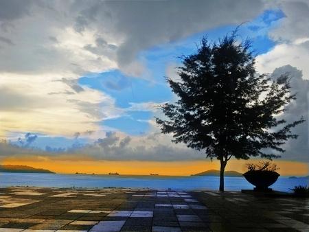 likas: view in Likas Bay Kota Kinabalu, Sabah