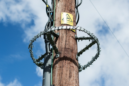 Wire protect the electric pole