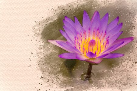 Closeup lotus in the swamp. Digital watercolor painting effect. Copy space for text. Stock Photo - 132061300