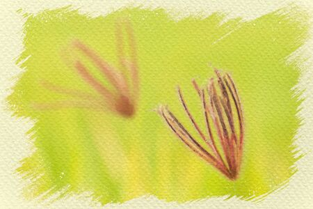 Flowering grass in green of meadow. Digital watercolor painting effect. Copy space for text. Stock Photo - 132061382