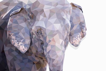 Low poly the head of elephant on white background. Closeup and copy space for text. Polygonal vector illustration design.