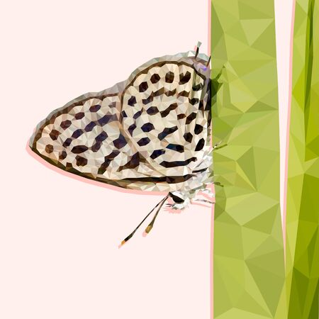 Polygonal butterfly on white background. Low poly butterfly Butterfly landing on to the grass. concept of freedom and happiness. vector illustration design. Ilustração