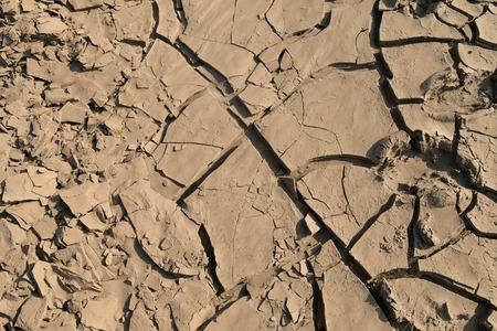 nieużytki: barren landscape