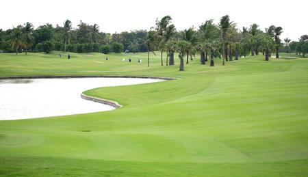golf course: Beautiful golf course.